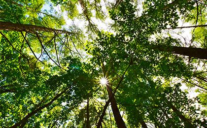 森高ローラ製作所のCSR活動について
